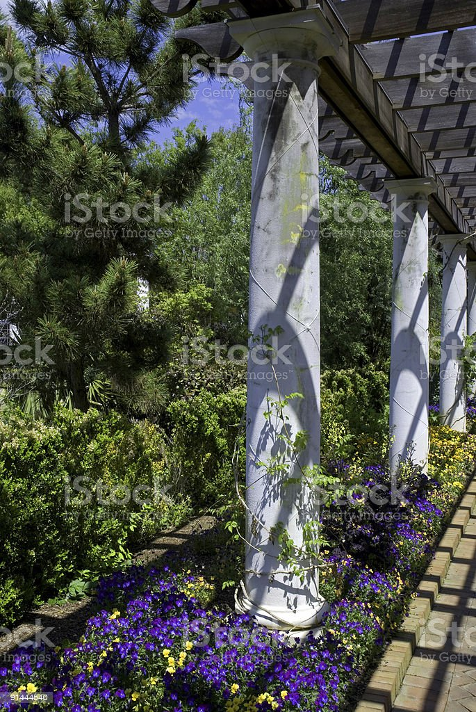 Pansies and Pillars royalty-free stock photo