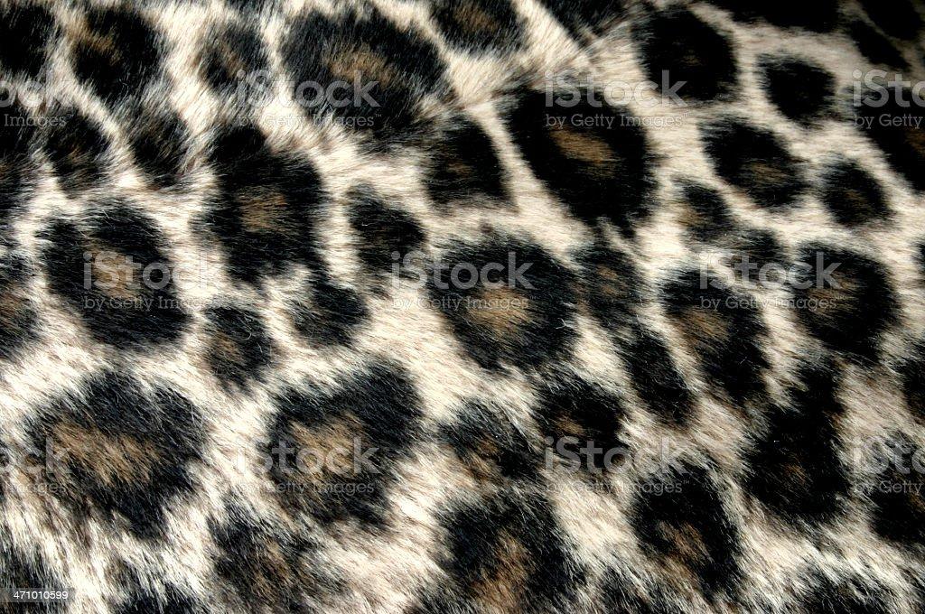 panther pattern stock photo