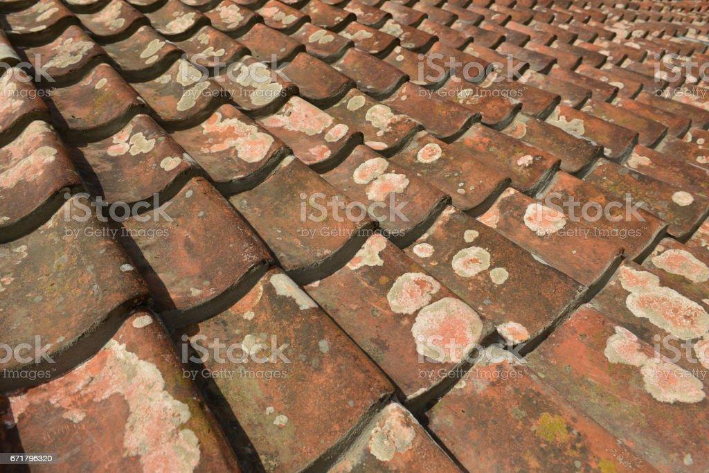 Pantile slate roof, Jersey, U.K. stock photo