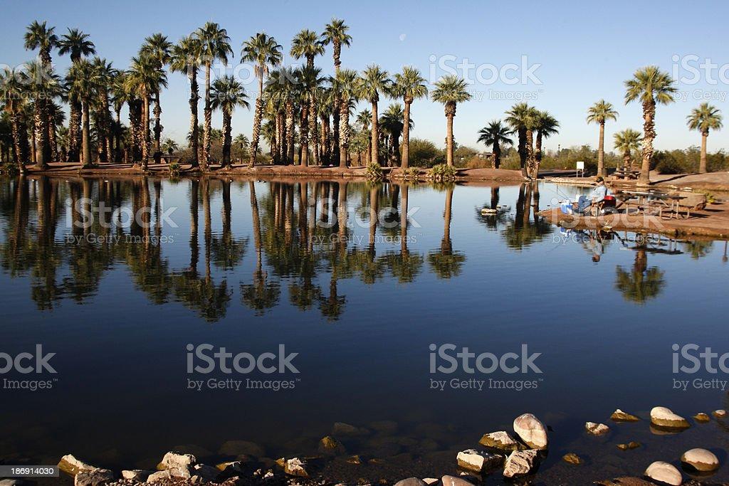 Papago Ponds stock photo