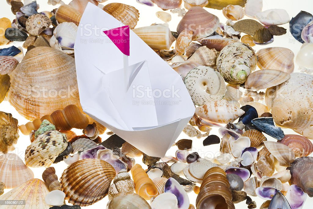 paper boat on background from sea shells stock photo