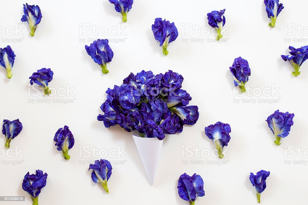 paper cone with Butterfly pea bouquet stock photo