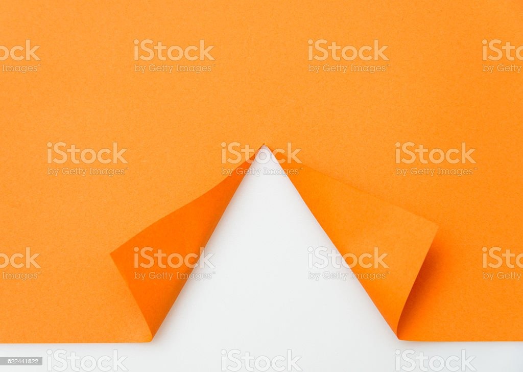 Paper cut in the shape of a tree stock photo