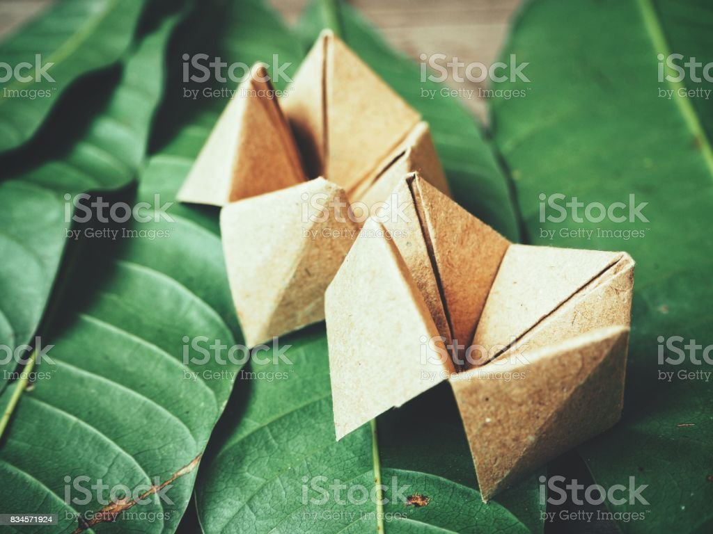 Paper fortune teller on leaves background stock photo