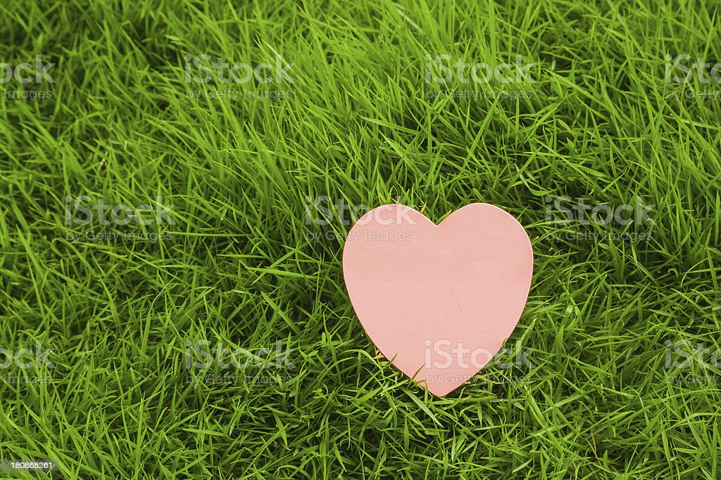 Paper Heart in Grass stock photo