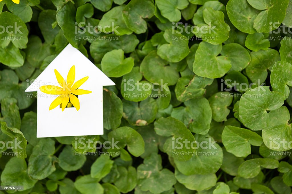 Paper house against green background. Real Estate Concept stock photo