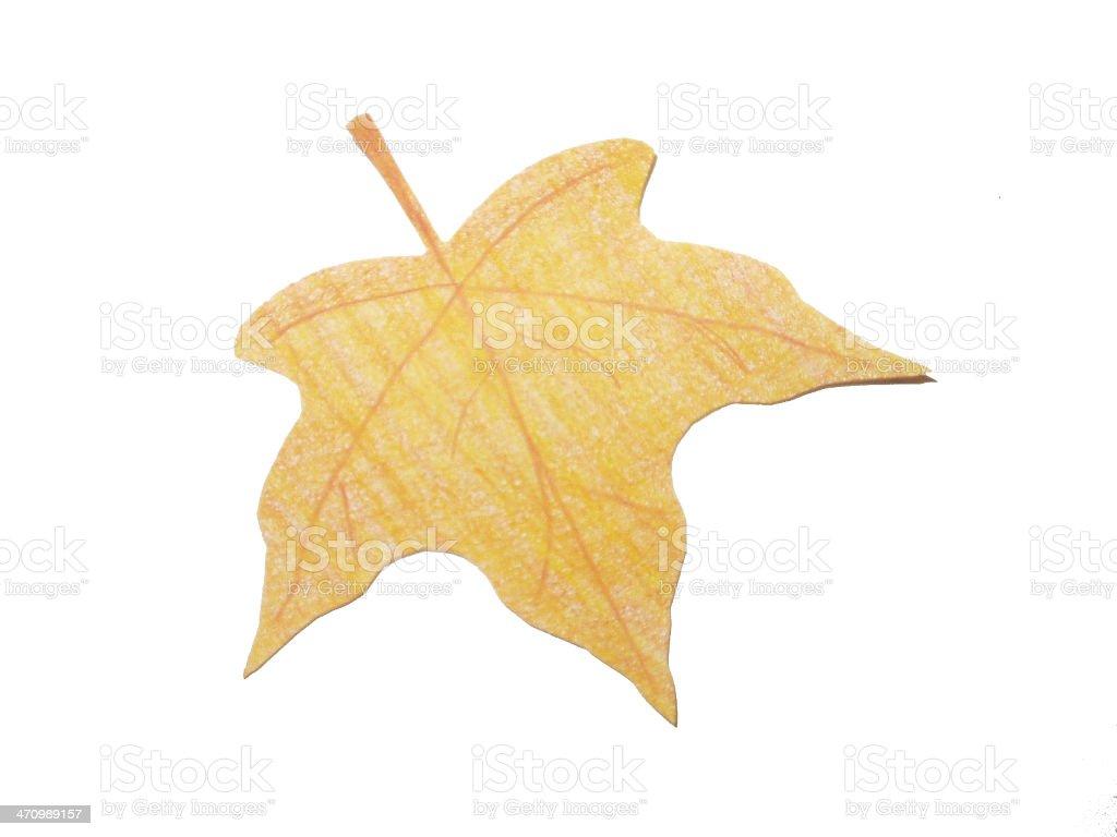 Paper Leaf (1) royalty-free stock photo