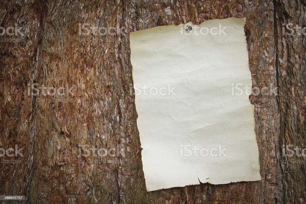 paper nailed to a tree stock photo