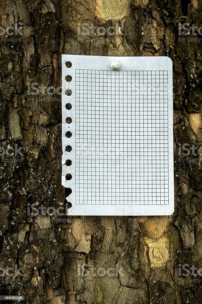 Paper notice at the bark of tree stock photo