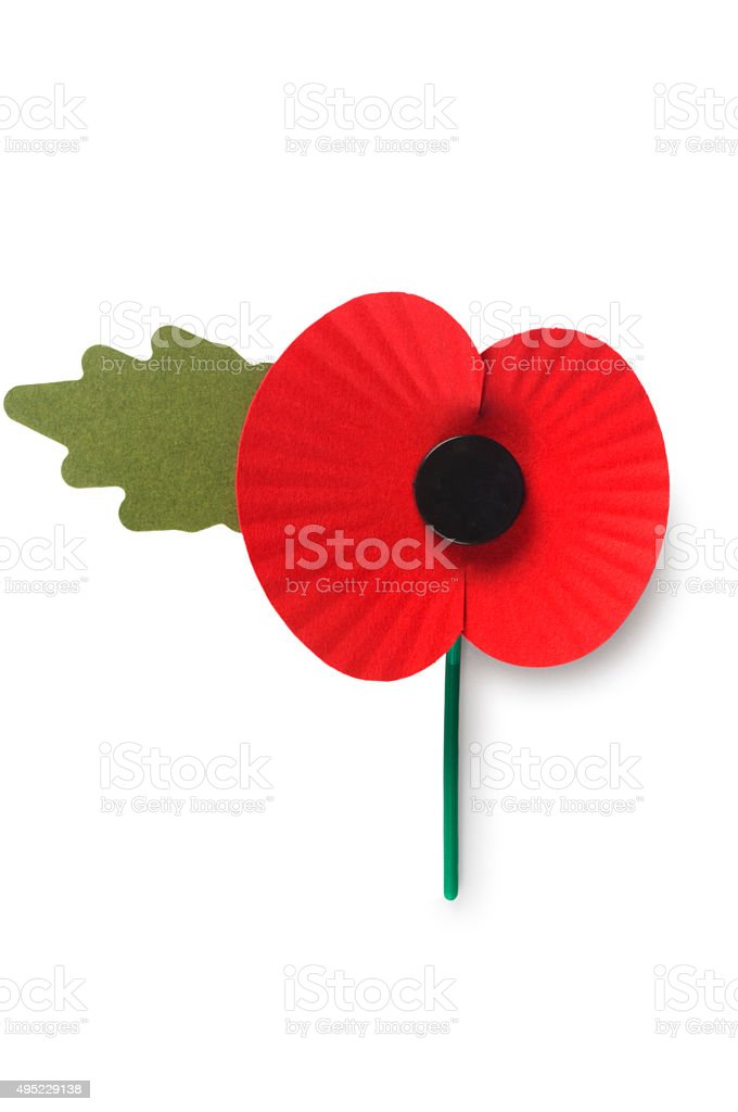 Paper Poppy stock photo