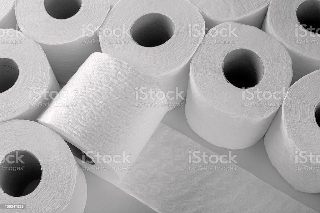 paper toilet rolls stock photo