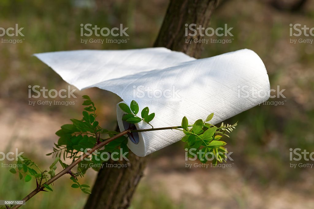 Paper towel roll waving in the wind in forest stock photo