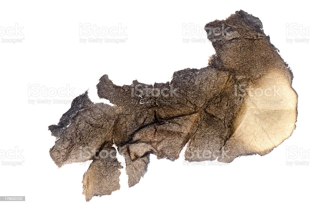 paper with burned edges royalty-free stock photo