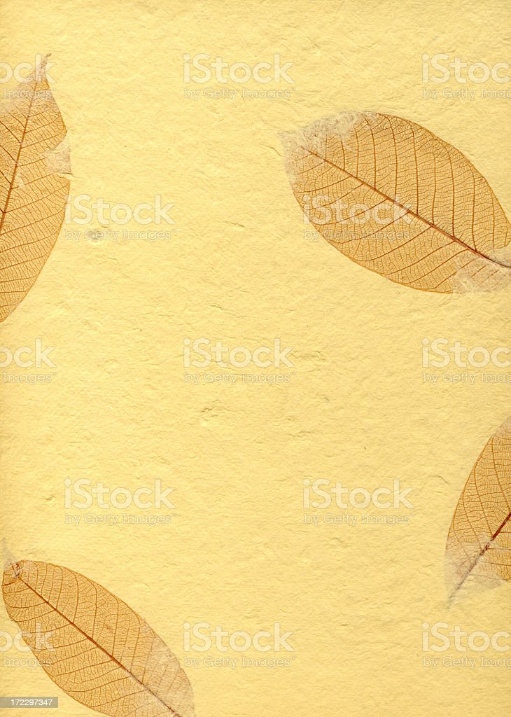 Paper with Leaves royalty-free stock photo