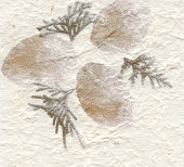 Paper with natural flowers background