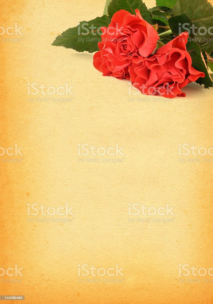 paper with rose motive royalty-free stock photo