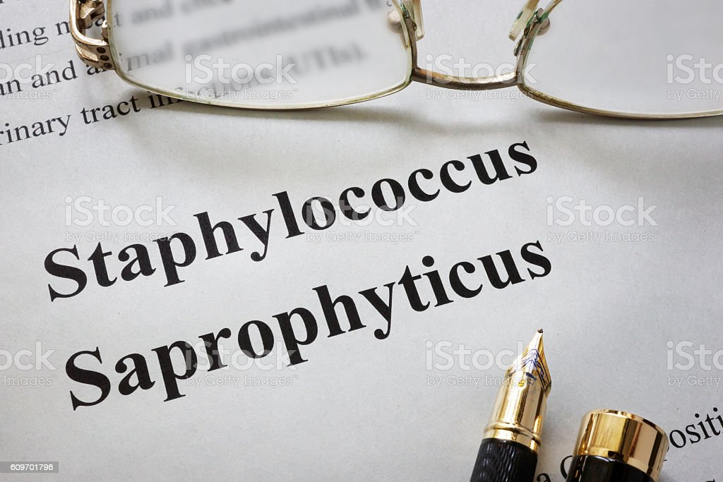 Paper with words staphylococcus saprophyticus  and glasses. stock photo