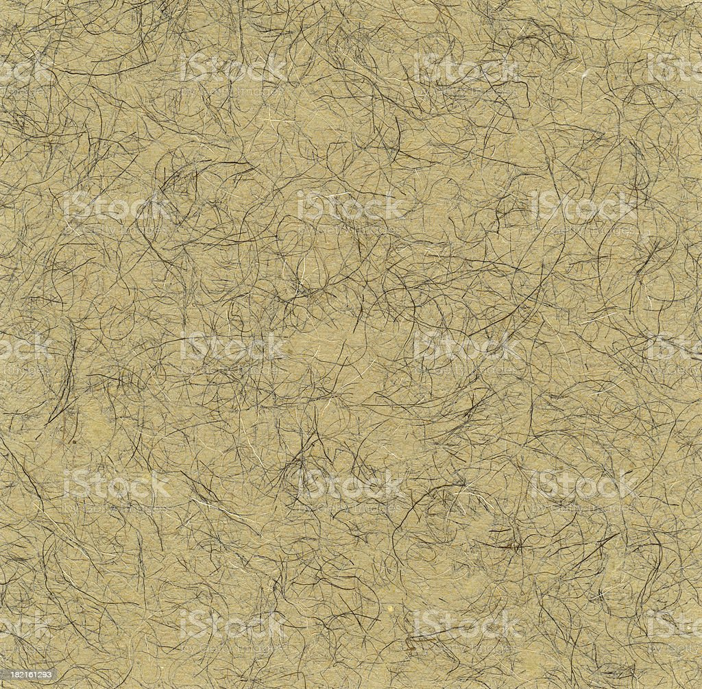 Papers of Distinction: Cow Hair stock photo