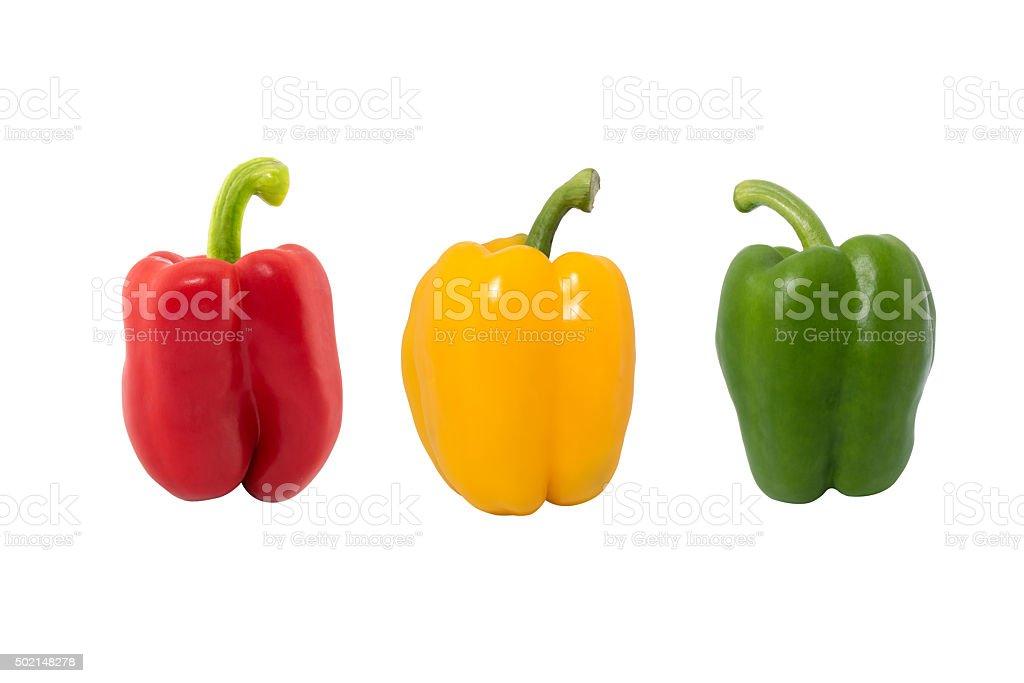 Paprika is a cultivar of the species Capsicum annuum paprika stock photo