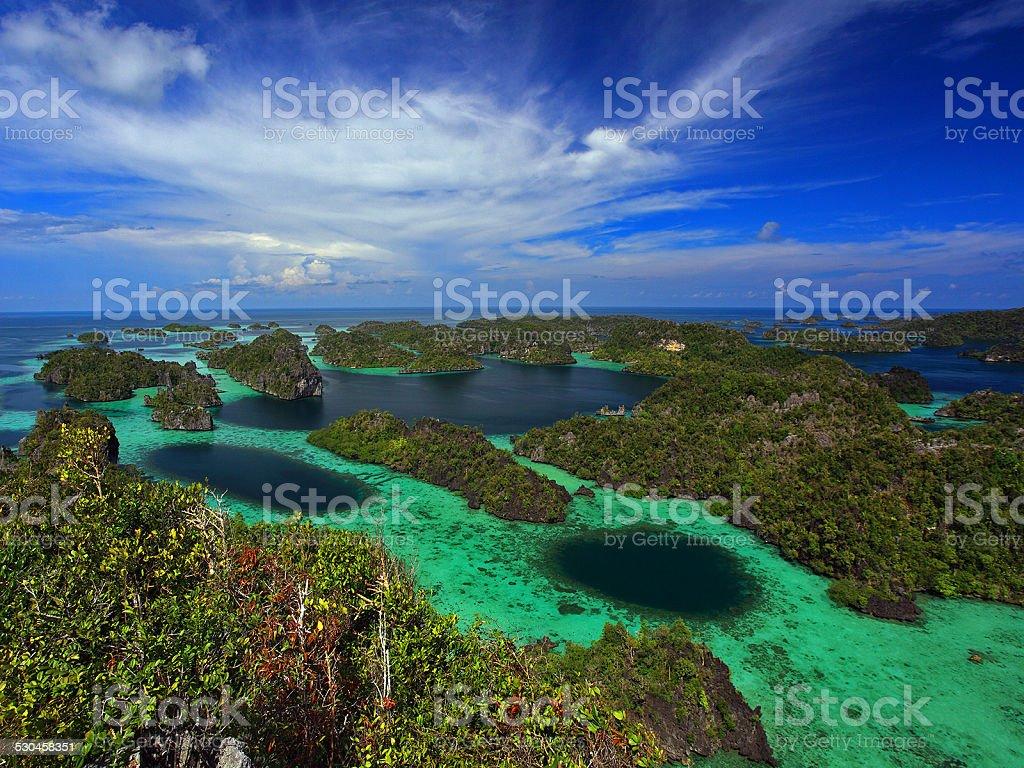 papua stock photo