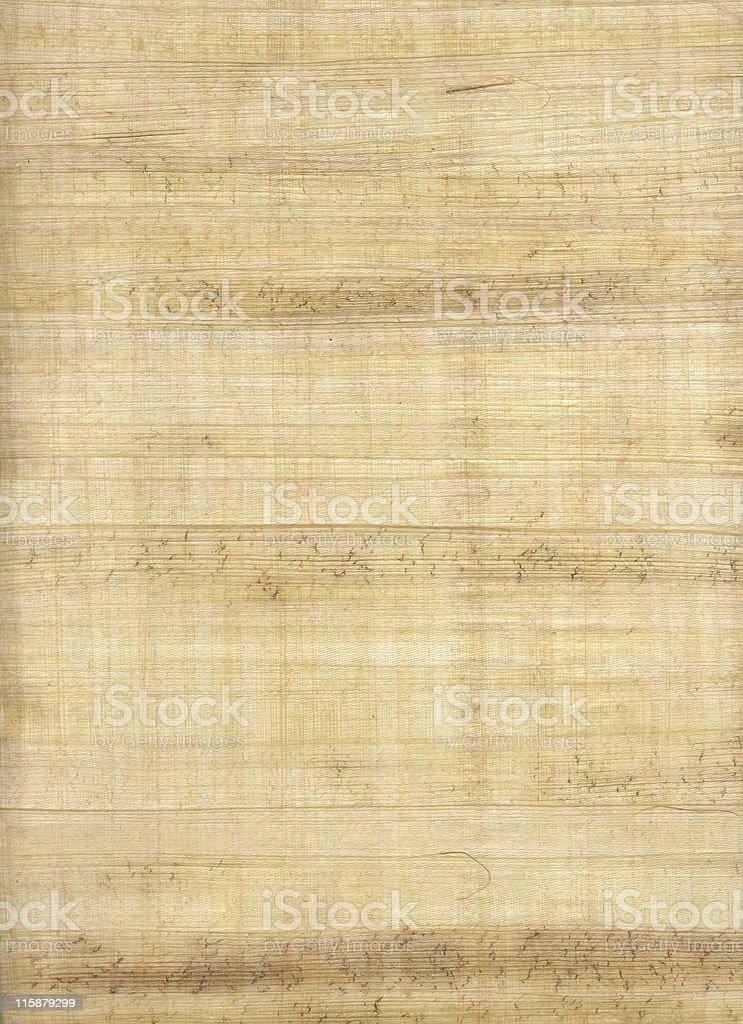 papyrus paper stock photo