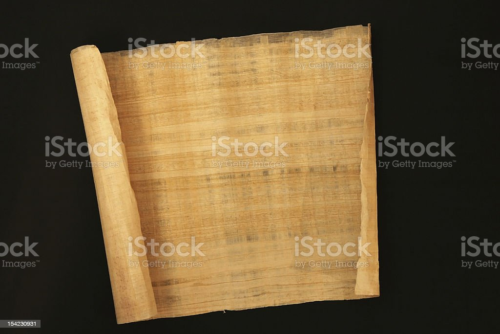 papyrus stock photo