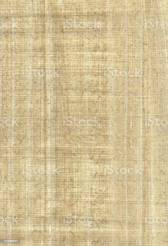 papyrus texture royalty-free stock photo