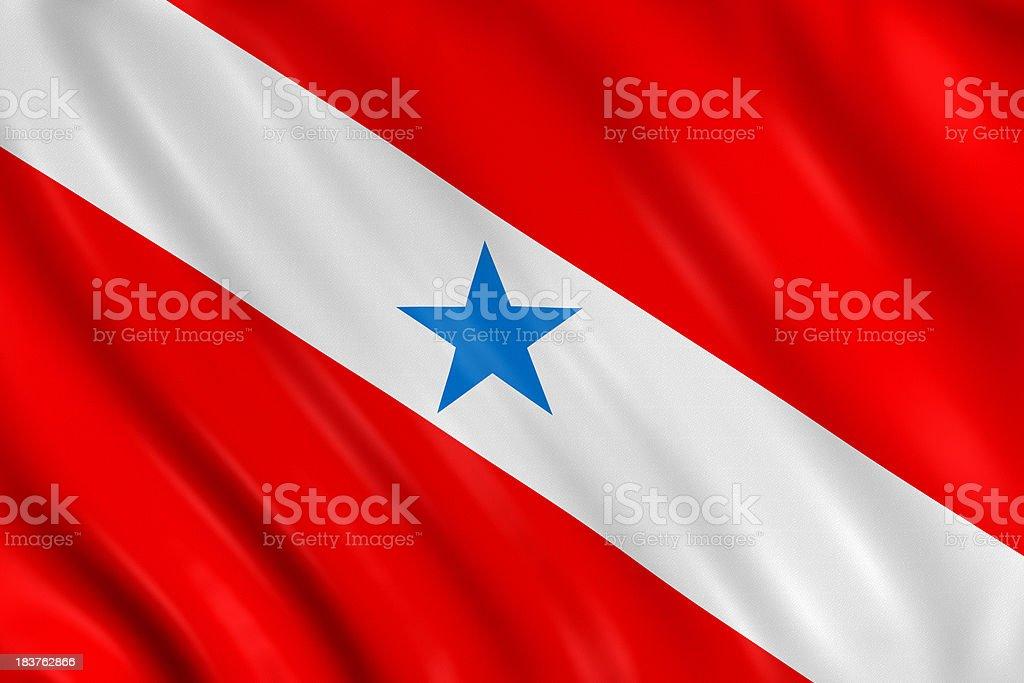 para state flag royalty-free stock photo