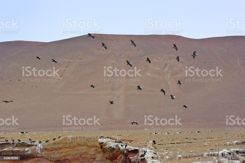 Paracas National Park - El Candelabro stock photo