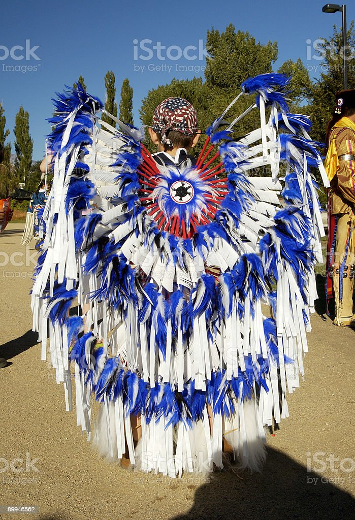 Parade feathers 1 royalty-free stock photo