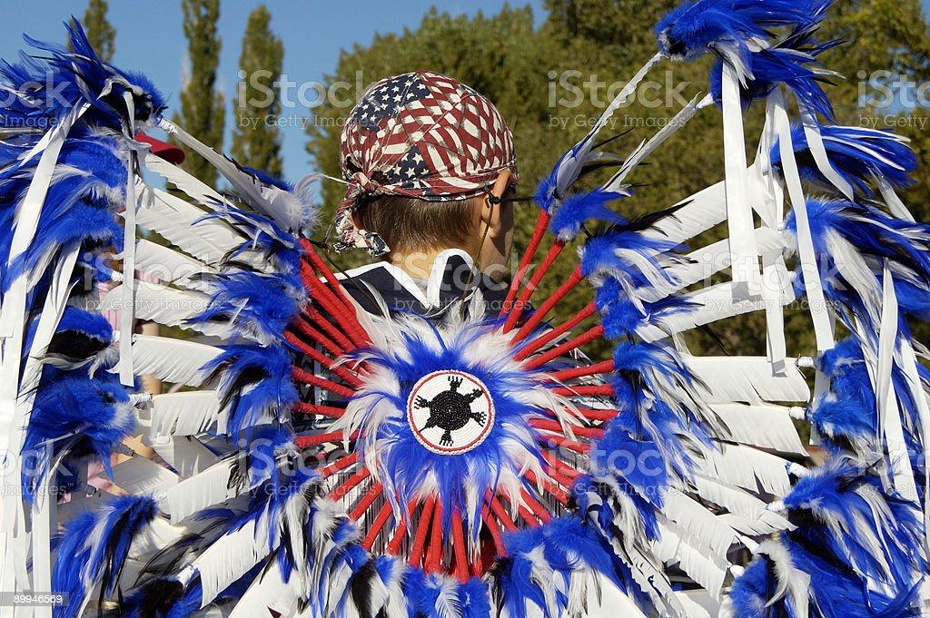Parade feathers 3 royalty-free stock photo