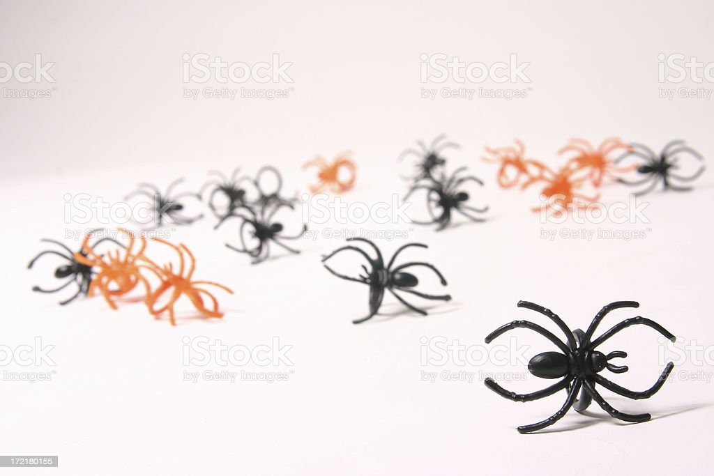 Parade Of Spider Rings stock photo