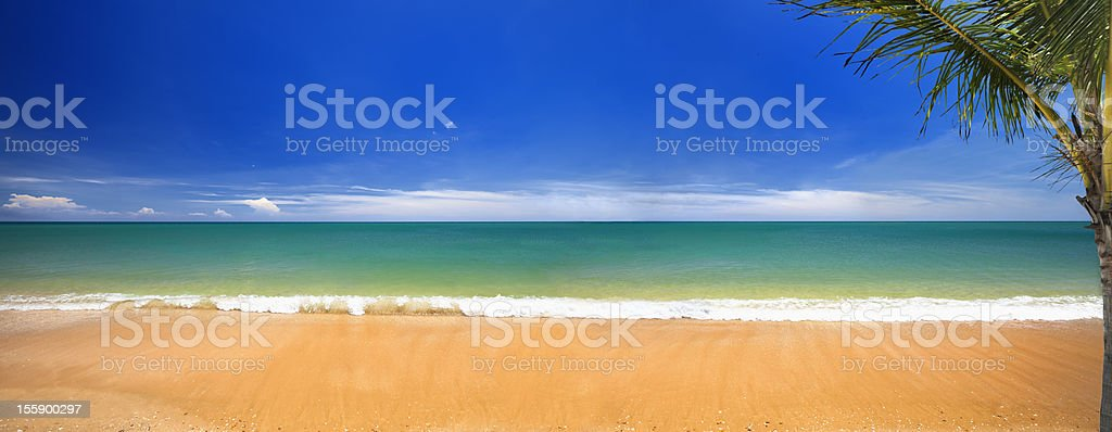 Paradisaical tropical golden sand Hawaiian beach royalty-free stock photo