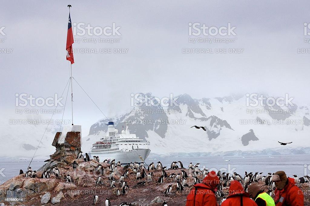 Paradise Bay Tourist And Gentoo Penguin Colony stock photo