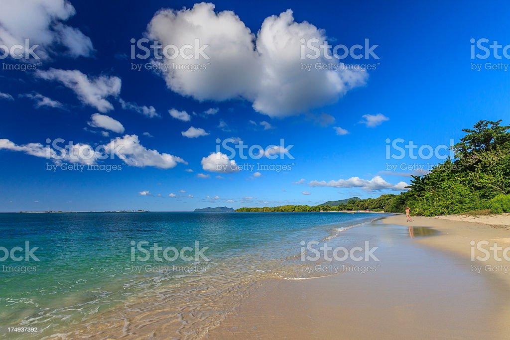 Paradise Beach, Grenada W.I. royalty-free stock photo