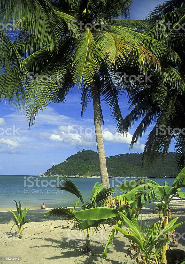 Paradise Beach in Thailand royalty-free stock photo