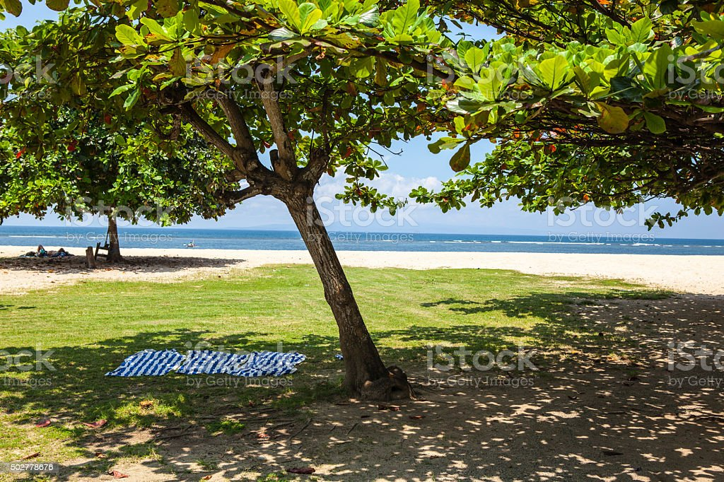 Paradise beach of Bali ( Indian Ocean) stock photo