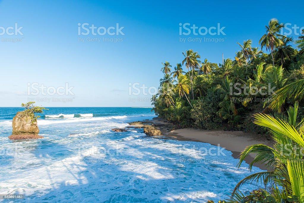 Paradise beach of Manzanillo at Puerto Viejo, Costa Rica stock photo