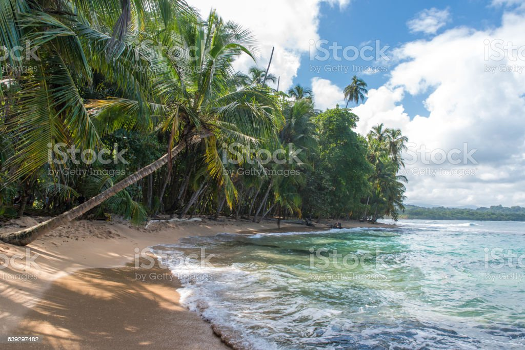 Paradise beach of Manzanillo Park in Costa Rica stock photo