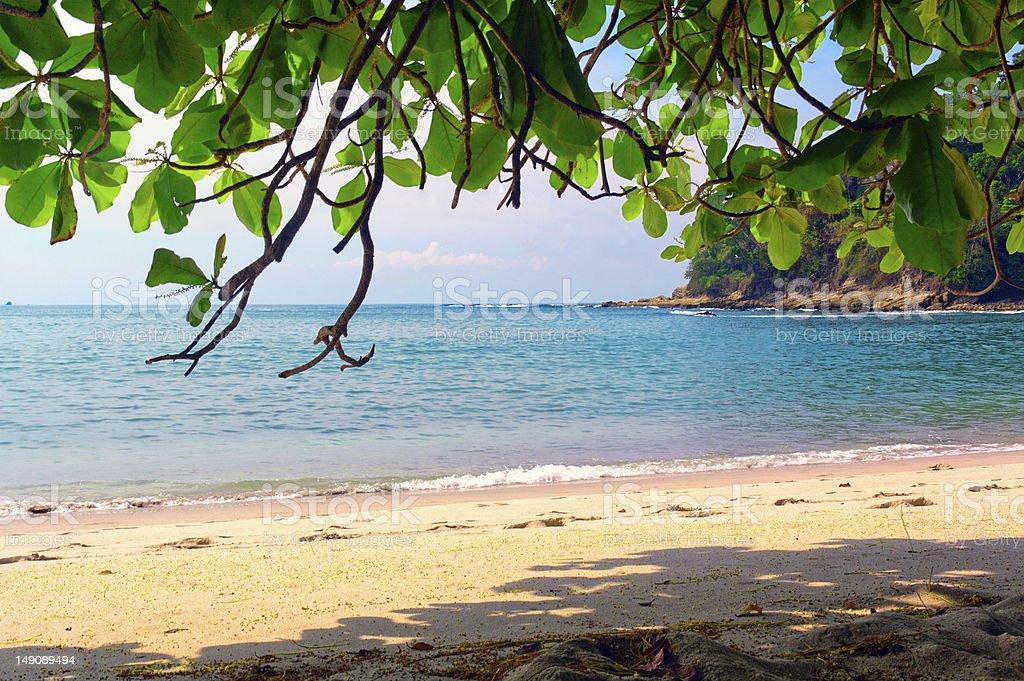 Paradise beach on a summer day stock photo