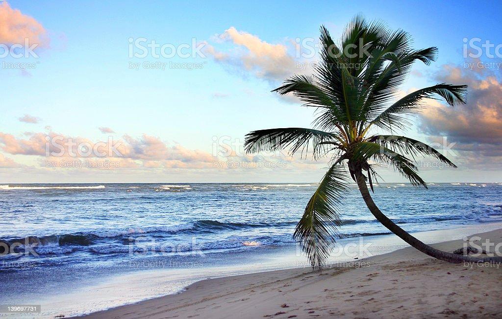 Paradise Beach royalty-free stock photo