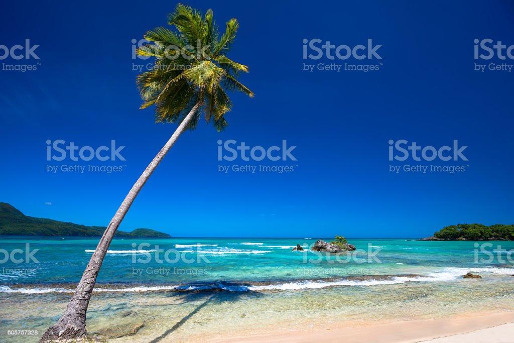 Paradise beach Playa Rincon, Dominican Republic stock photo