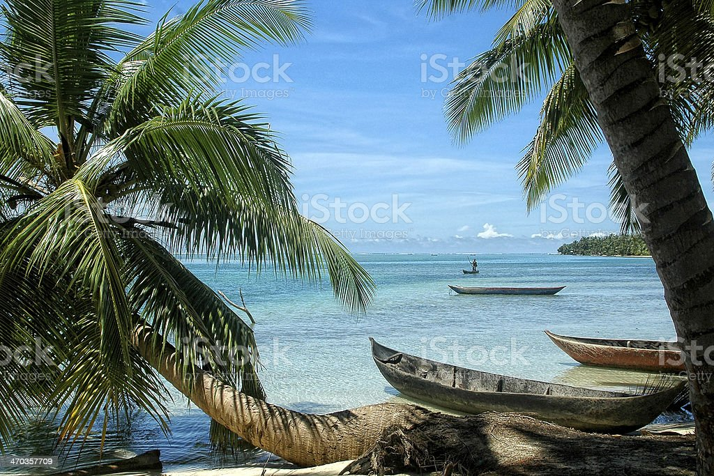 Paradise beach with canoes and palm tree stock photo