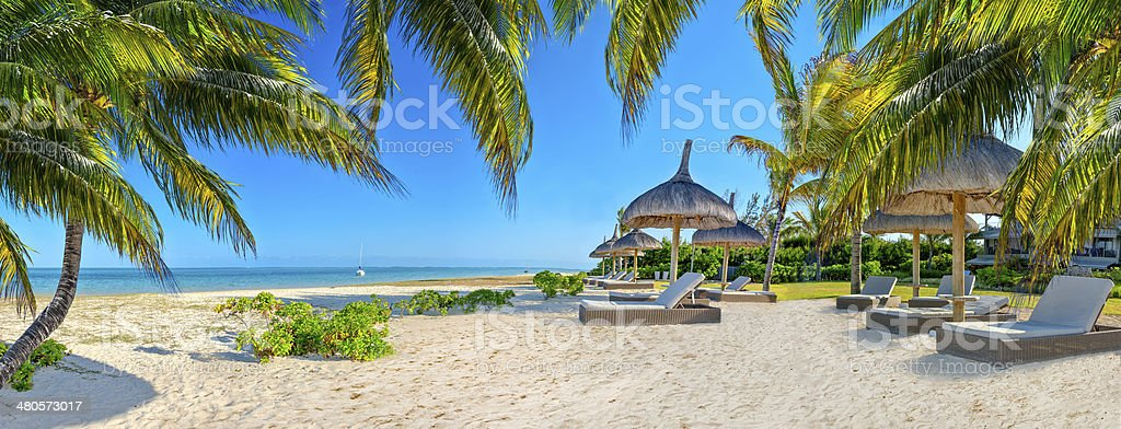 Paradise beach with palms and parasol stock photo