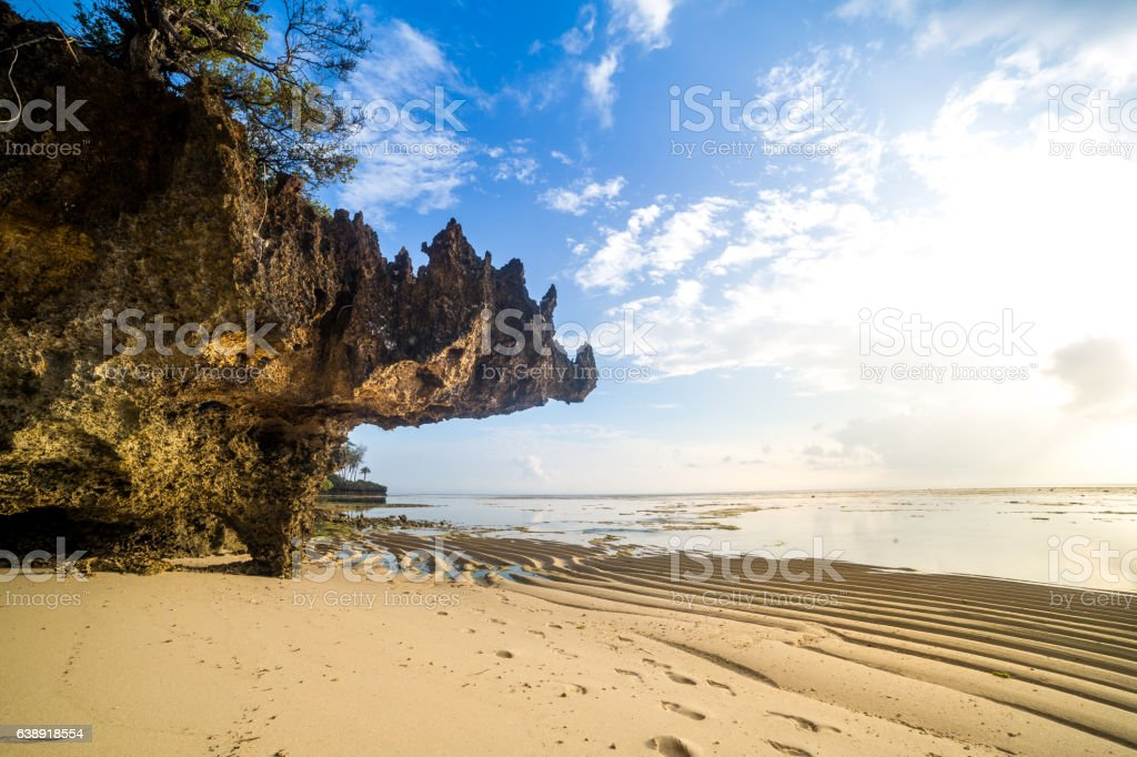 Paradise beach with white sand and palms stock photo