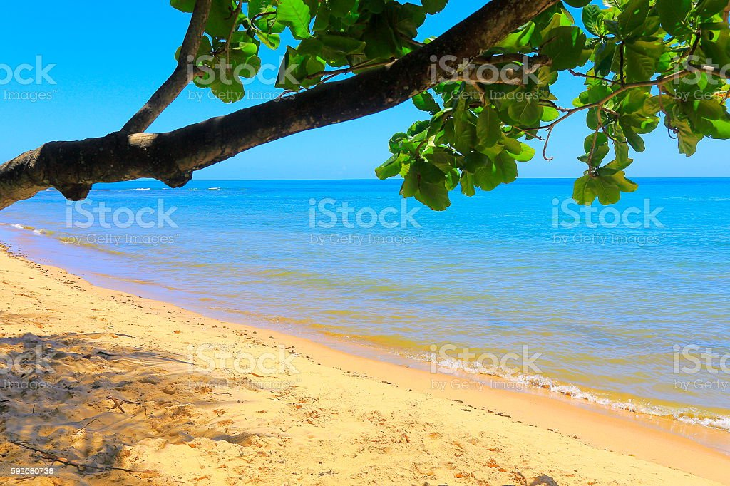 Paradise: Boipeba idyllic Tropical beach, Bahia state, Northeastern Brazil stock photo