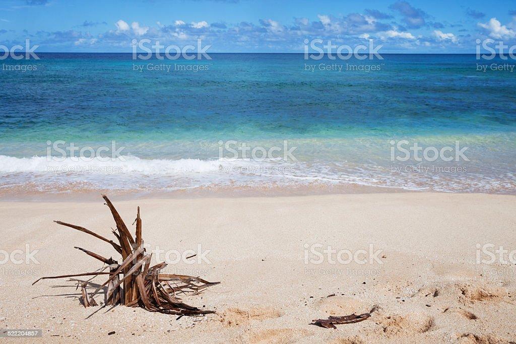 Paradise Found stock photo