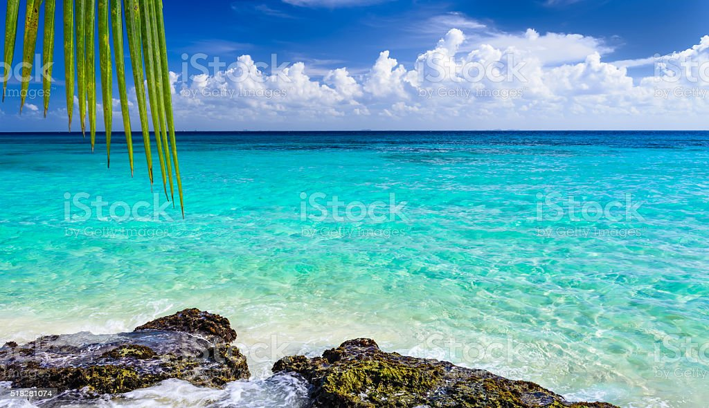 Paradise nature, sea water and summer on the tropical beach. stock photo