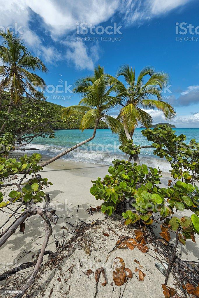 Paradise on St. John stock photo