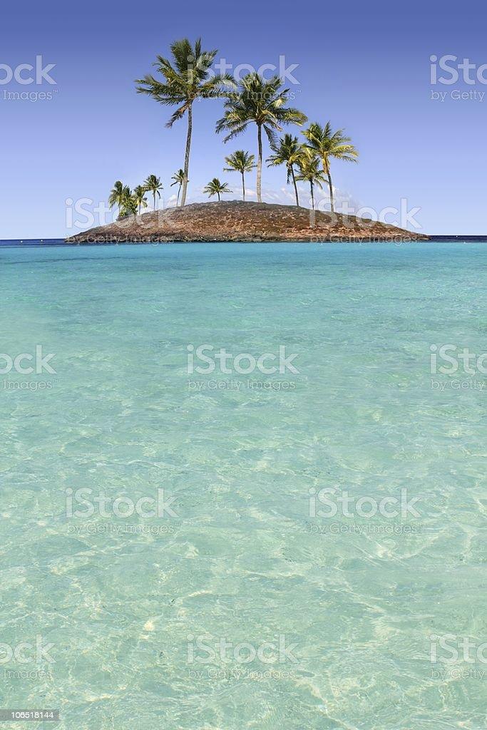 Paradise palm tree island tropical turquoise beach royalty-free stock photo
